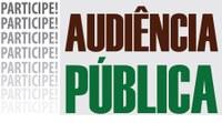Audiência pública para discutir os Pls39 e 40/2020